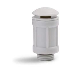FRANCHI SEMENTI - Seme Arachidi gr.50